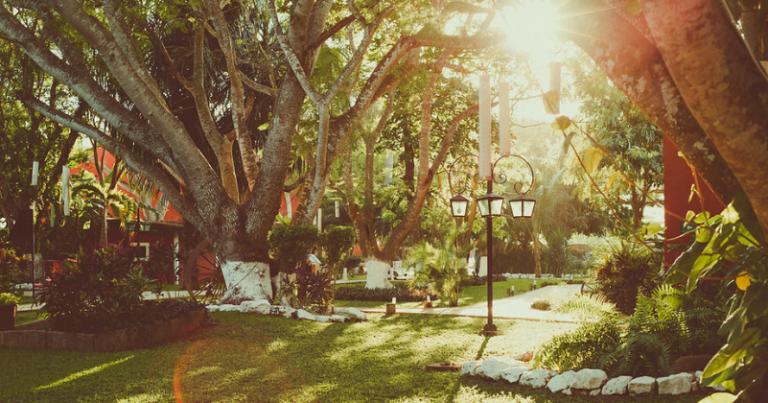 Destination wedding at Hacienda Santa Cruz 💐 Nila & Jaime